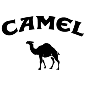 Camel Brand, Dealers, Distributor, Products in UAE