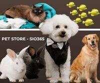 Pet store Marketplace in UAE